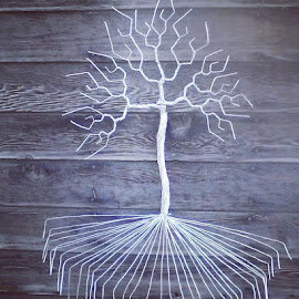 Tree D by Brian Boyer - Artistic Objects Other Objects