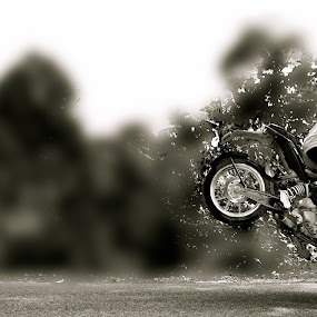 Stoppie by Prashanth UC - Transportation Motorcycles (  )