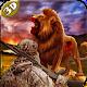 Lion Hunting Season