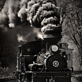 Days of the Train by Chuck  Gordon  - Transportation Trains ( steam train smoke, black and white )