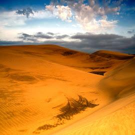 The Maspalomas by Stanley P. - Landscapes Deserts ( desert )