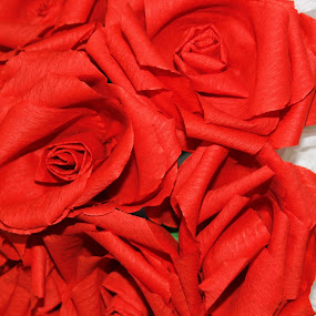 Paper Roses by Foto Amaze - Artistic Objects Other Objects ( paper, art, roses )