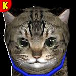 Hi Kitty lovely ? Virtual Pet Icon