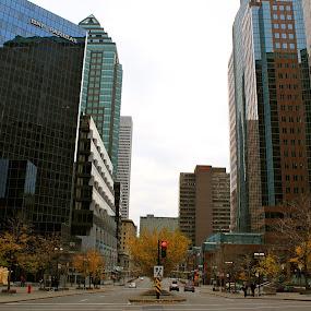 Montréal automnal by Antonin de Bertimbrie - City,  Street & Park  Street Scenes ( montreal, quebec, canada, grand, montréal, rue, street, batiments )