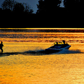 Sunset Skiing by Howard Sharper - Sports & Fitness Watersports ( water reflection, sunset, sports, waterspace, golden hour )