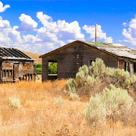 HOMESTEAD ON THE PRAIRIE OMESTEAD ON THE PRAIRIE  by Gerry Slabaugh - Buildings & Architecture Decaying & Abandoned ( home, buildings, homestead on the prairie, architecture, prairie, homestead )