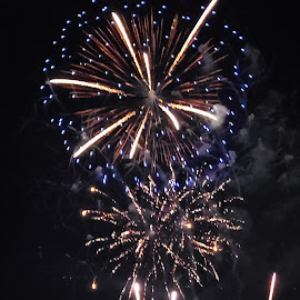 by Larry Chipman - Public Holidays July 4th (  )