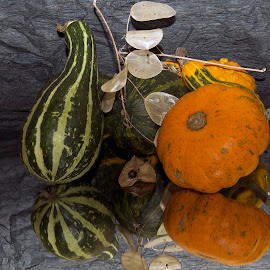 decoprative pumpkins by LADOCKi Elvira - Artistic Objects Other Objects
