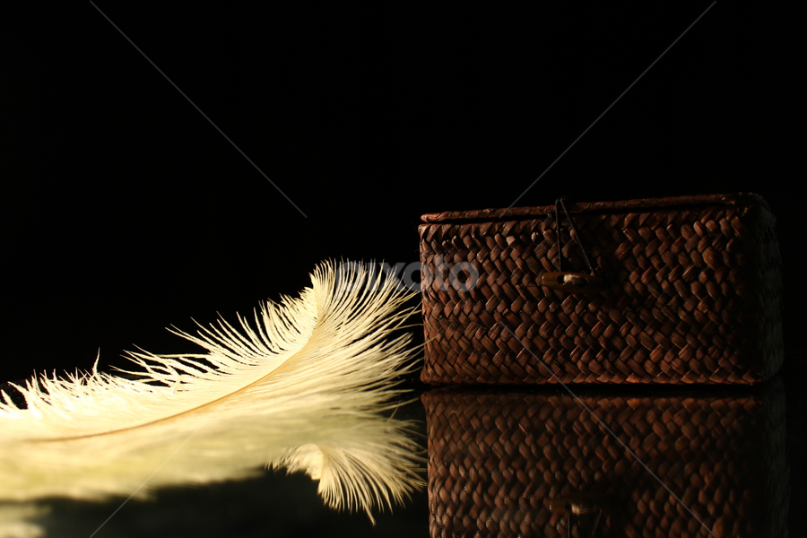 by Dipali S - Artistic Objects Other Objects ( reflection, lighting, box, feather )