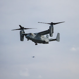 V-22 Osprey hovering by Rusty Goris - Transportation Helicopters ( fleet week, tilt roto, marines, nyc, osprey )