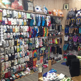 The Sock Shop by Dawn Simpson - City,  Street & Park  Markets & Shops ( fremantle, markets, shops, socks, freo, wa, colours )