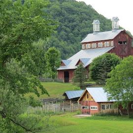 Tunbridge, Vermont Barn by Rita Goebert - Buildings & Architecture Architectural Detail ( tunbridge; vermont barns; farm; scenery; spring scene; )