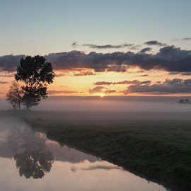 Loney Trees bij sunrise by Aschwinn Smith - Landscapes Weather ( midden-delftland, 2014, ochtendmist, eemzamen boom )