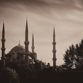 Blue Mosque by Azeem Shah - Buildings & Architecture Places of Worship