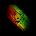 Rasta Reggae Theme for Lollipop - Android 5.0