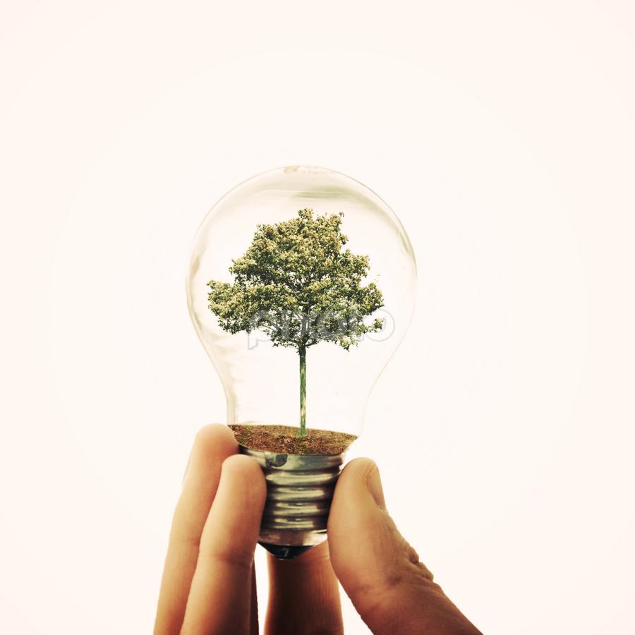 still life by Adrian  Limani - Digital Art Things ( creative, tree, still life, bulb, lamp, fine art )