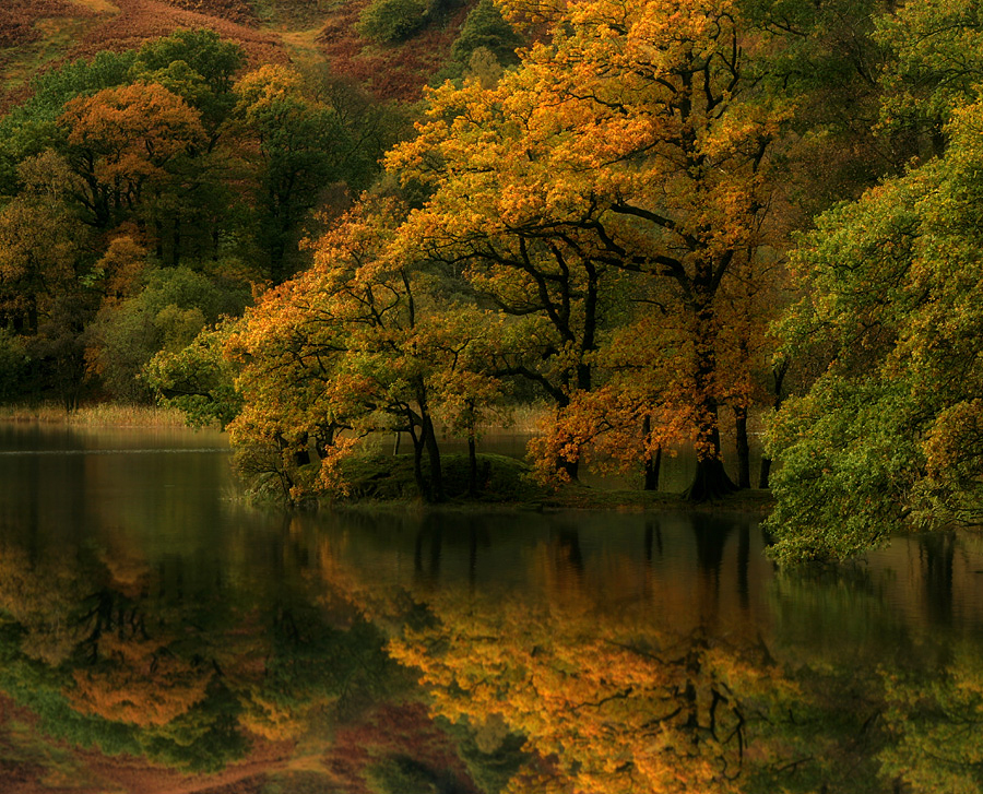 Autumn Moods by Wolfy Pic - Landscapes Waterscapes ( rydal water, cumbria, autumn, trees, wolfy, lake district, grasmere )