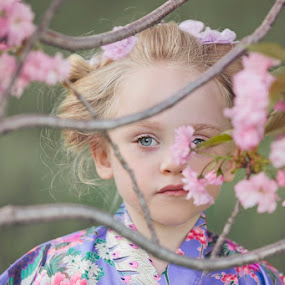 Geisha in the Blossoms by Kristen VanDeventer Rice - Babies & Children Child Portraits ( kimono, child, cherry, blonde, girl, geisha, pink, blossoms )