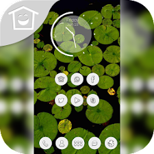 Green lotus leaf black themes