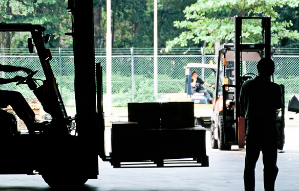 Novice Forklift truck Training