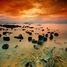GOLD SUNSET by Assoka Andrya - Landscapes Weather