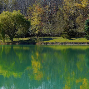 Tranquil Reflections by Kathy Woods Booth - Landscapes Waterscapes ( reflection, calmness, serenity, serene, reflections, tranquility )
