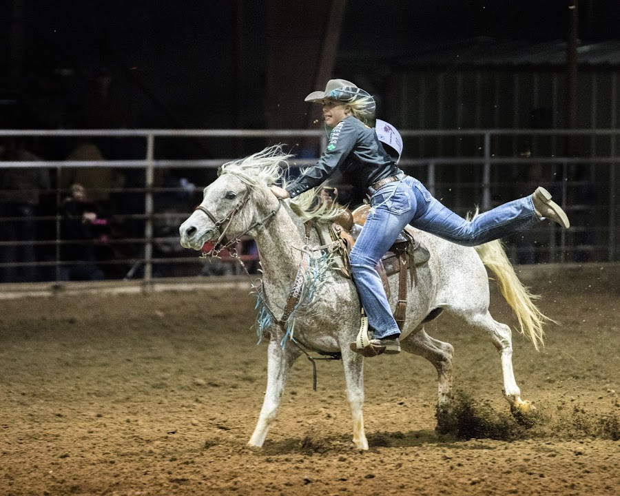by Terry Watson - Sports & Fitness Rodeo/Bull Riding