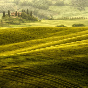 Belvedere B side by Lorenzo Moggi - Landscapes Prairies, Meadows & Fields
