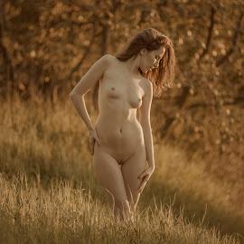 Gold of Autumn by Dmitry Laudin - Nudes & Boudoir Artistic Nude ( nude, girl, grass, autumn, sunset, glare, beauty, light, bokeh, sun )