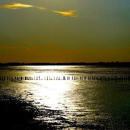 summer sunset by Kim Moeller Kjaer - Landscapes Sunsets & Sunrises