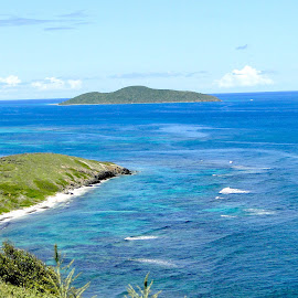 by Liz Rosas - Landscapes Waterscapes ( coral, vacation, reef, waves, buck island, st. croix, current, ocean, point udall, beach, caribbean, virgin islands )