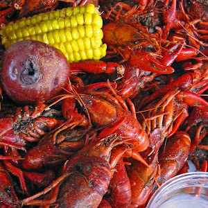 crayfish and beer.jpg