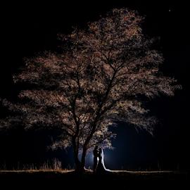 Braveheart by Lodewyk W Goosen-Photography - Wedding Bride & Groom ( love, weddings, wedding, couple, bride and groom, bride, marriage, groom )