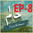 Haalim 8 urdu novel Nimrah Ahmed Nemrah