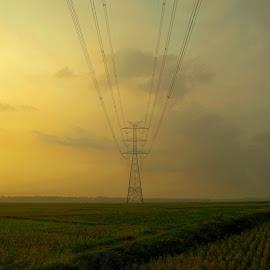 by Alfandy Setiawan - Uncategorized All Uncategorized ( #landscape #nikon #field #sunrise #bwonderful #indonesia #bright )