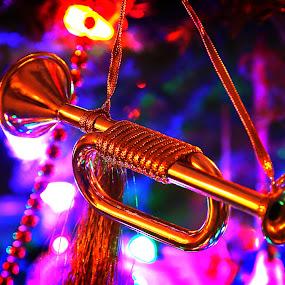 by Todd Klingler - Public Holidays Christmas (  )
