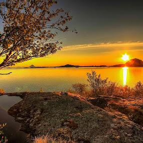 Det finnes ingentig vakrere enn solnedgangene på Helgelandskysten :-D <3 by Ann-Inger Babben Aasen - Uncategorized All Uncategorized