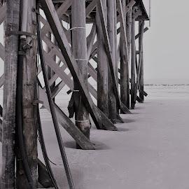 Illustration by J & M - Black & White Landscapes ( image, sand, view, illustration, sea )