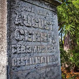 August Gerst 2 by Pat Lasley - City,  Street & Park  Cemeteries ( cemetery, headstone, grave, gravestone, antique )