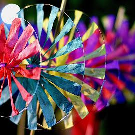 Toy Wind fan by Sudhakar Kumar - Artistic Objects Education Objects ( toy, india, fun, fan, windmill, kid )