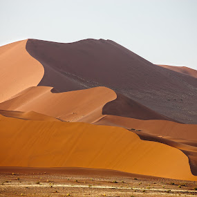 Red Namibian dunes by Anthony Allen - Landscapes Deserts ( sossusvlei, sand dunes, red sand, namibia )