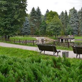 by Natalie Ax - Uncategorized All Uncategorized ( rest, green, bench, park, sitting )