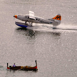 If it floats! by Francis Xavier Camilleri - Transportation Other