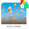 App Reeds Xperia Theme APK for Kindle