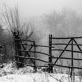 by Vladau Vlad - Black & White Landscapes