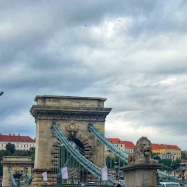 Budapest Chain Bridge by Chintan Daiya - Buildings & Architecture Bridges & Suspended Structures ( road, budapest, bridge, hungary, architecture )