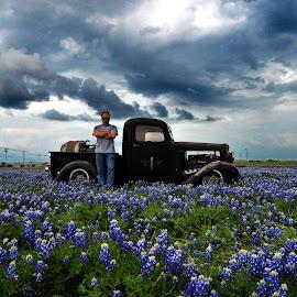 Blue Bonnets in Bloom by Kevin Dietze - Landscapes Prairies, Meadows & Fields