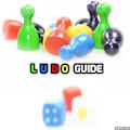 Ludo Guide