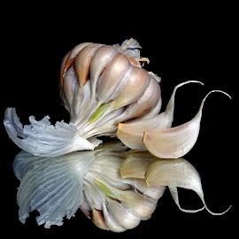 Garlic  by Asif Bora - Food & Drink Ingredients (  )