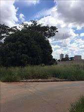 Terreno residencial à venda, Vila Rosa, Goiânia. - Vila Rosa+venda+Goiás+Goiânia